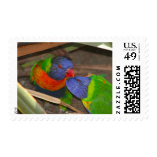 Lorikeet Love Postage Stamp