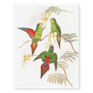 Lorikeet Parrot Birds Wildlife Animals Tattoo