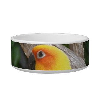Lorikeet Pet Bowl