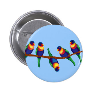 Lorikeets del arco iris pin redondo de 2 pulgadas