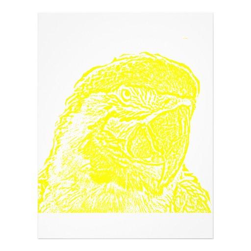 """loro amarillo gráfico del esquema de la opinión pr folleto 8.5"""" x 11"""""""