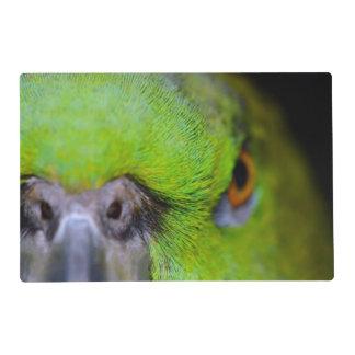 Loro Amarillo-Naped del Amazonas de Shirley Taylor Salvamanteles