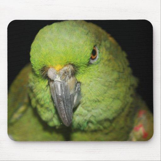 Loro Amarillo-Naped Mousepad del Amazonas Tapetes De Ratones