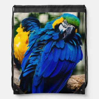 Loro azul del Macaw, pájaro tropical exótico Mochilas