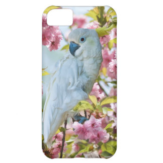 Loro blanco en caso del iPhone 5 de las flores de