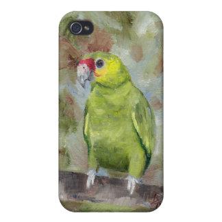 Loro bonito III iPhone 4/4S Carcasa