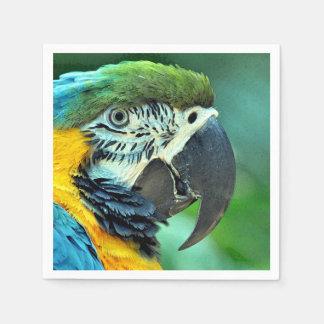 Loro colorido del macaw servilletas desechables