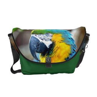 Loro colorido - la bolsa de mensajero bolsa messenger