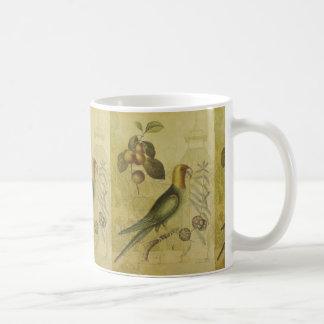 Loro con los ciruelos tazas de café