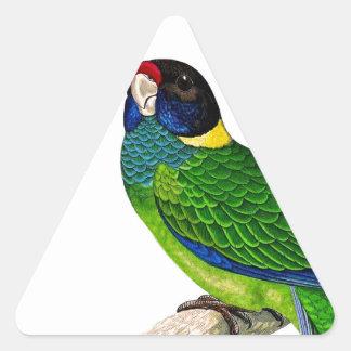 Loro curioso del amarillo del verde azul del pegatina triangular