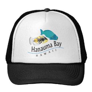 Loro de la bahía de Hanauma y pescados del dispara Gorros