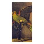 Loro de Vincent van Gogh Tarjetas Fotograficas