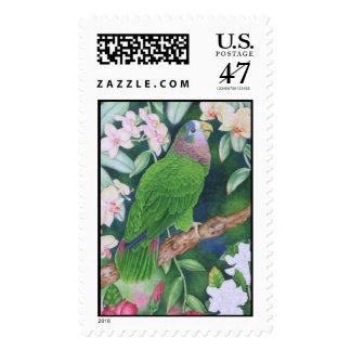 Loro del Amazonas Timbres Postales