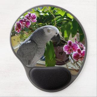 Loro del gris africano con las orquídeas alfombrilla de raton con gel