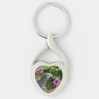 Loro del gris africano con las orquídeas llavero plateado en forma de corazón