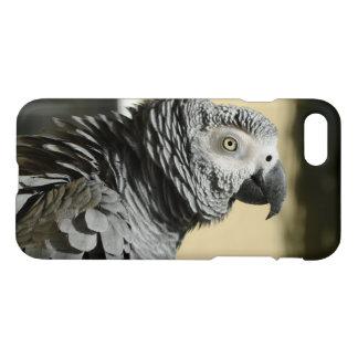 Loro del gris africano de Congo con las plumas Funda Para iPhone 7
