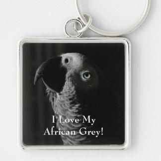 Loro del gris africano de Congo Llaveros