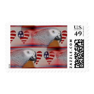 Loro del gris africano el 4 de julio sello postal
