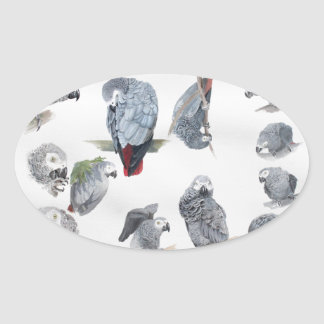 Loro del gris africano. Exclusiva diseñada por Pegatina Ovalada