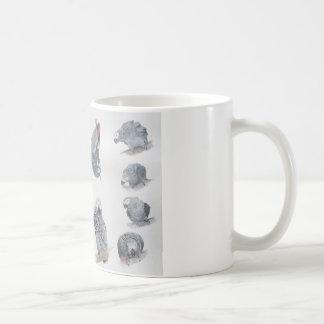 Loro del gris africano. Exclusiva diseñada por Taza Básica Blanca