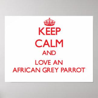 Loro del gris africano posters