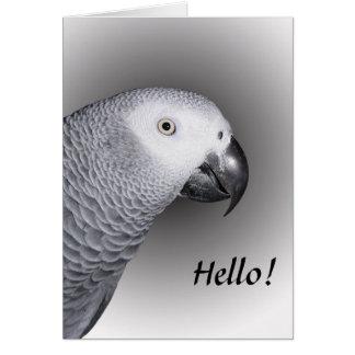 Loro del gris africano tarjeta de felicitación
