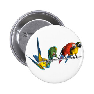 Loro del Macaw Pin Redondo De 2 Pulgadas