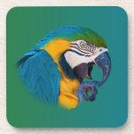 Loro del Macaw, práctico de costa adaptable del co Posavasos De Bebidas