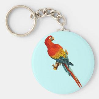 Loro Desing de Macaw del Scarlet del vintage Llaveros Personalizados
