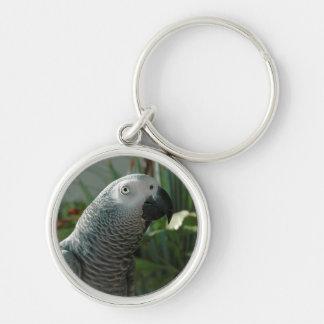 Loro dignificado del gris africano llavero redondo plateado