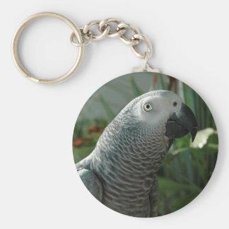 Loro dignificado del gris africano llavero redondo tipo pin