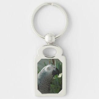 Loro dignificado del gris africano llavero plateado rectangular