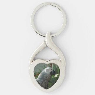 Loro dignificado del gris africano llavero plateado en forma de corazón