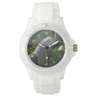 Loro dignificado del gris africano reloj de mano