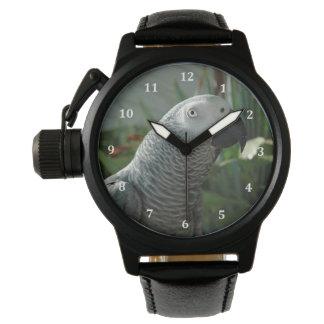 Loro dignificado del gris africano relojes de pulsera