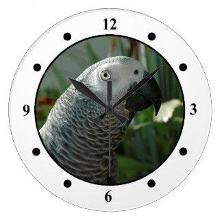 Loro dignificado del gris africano reloj redondo grande