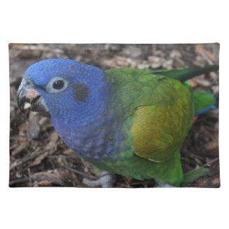 Loro dirigido azul del Amazonas en la tierra Mantel Individual