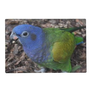 Loro dirigido azul del Amazonas en la tierra Salvamanteles
