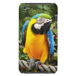 Loro exótico del Macaw Case-Mate iPod Touch Protectores