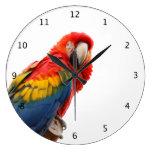 Loro, foto hermosa del pájaro del macaw reloj redondo grande