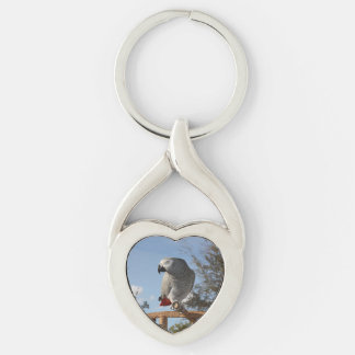 Loro imponente del gris africano llavero plateado en forma de corazón