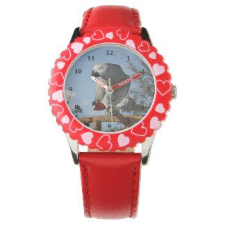 Loro imponente del gris africano reloj de mano