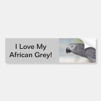 Loro magnífico del gris africano pegatina para auto