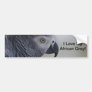Loro majestuoso del gris africano pegatina para auto
