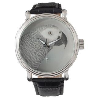 Loro majestuoso del gris africano relojes de mano