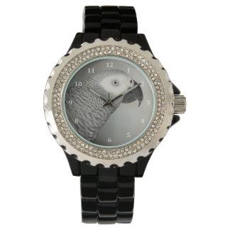 Loro majestuoso del gris africano relojes de pulsera