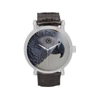 Loro majestuoso del gris africano reloj de mano
