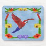 Loro Mousepad del Macaw Tapetes De Ratones