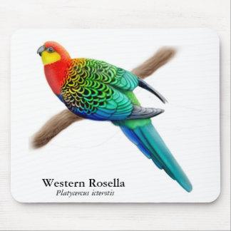Loro occidental Mousepad de Rosella Tapetes De Raton