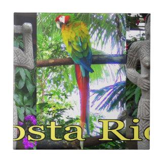 Loro precolombino de Costa Rica Azulejo Cuadrado Pequeño
